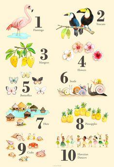 Abecedario Con Animales En Espa 241 Ol Alfabeto Pinterest
