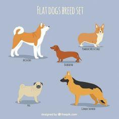 Conjunto plano de razas de perro