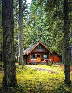 Old Cabins, Cabins And Cottages, Cabins In The Woods, House In The Woods, Cabins In The Mountains, Small Log Cabin, Cozy Cabin, Cabin Homes, Log Homes