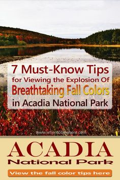 7 Must-Know Tips for the Fall Color Explosion in Acadia National Park - Maine. Things to do when visiting in autumn. Watching the leaf colors. Acadia National Park Camping, Grand Canyon Camping, Yellowstone Camping, Camping In Ohio, Camping World, Camping Cabins, Camping Places, Fall In Connecticut, Southern California Camping