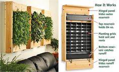 I'm thinking indoor herb garden?