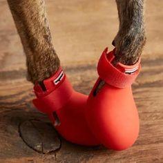 Wagwear WagWellies™ Dog Boots | Red – Vanillapup