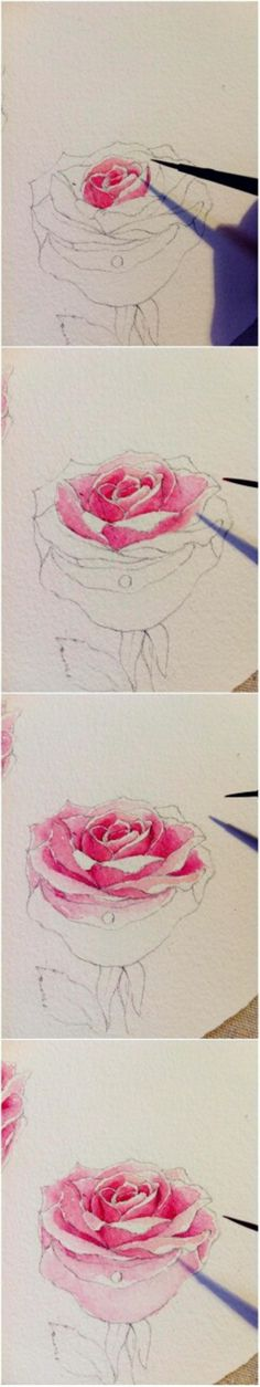 . Drawing Tutorial - Rose small part by: twins ....
