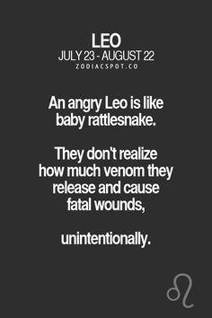 Leo Virgo Cusp, Leo Horoscope, Astrology Leo, Leo Personality Traits, Leo Traits, Leo Zodiac Facts, Zodiac Signs Pisces, Libra Quotes, Qoutes