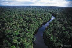 Bolivia, leading blue tropical rainforest wilderness highway