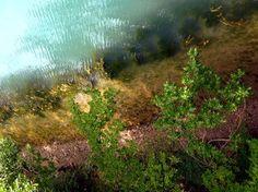 Riverside Photo by Saba Khozoui — National Geographic Your Shot