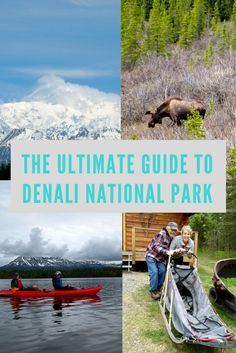 While living in Anchorage, AK I made it a priority to explore Denali National Park in great detail so you can plan the perfect trip without all my trial and error. Follow me & you'll be set!