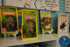 A Little Non-Fiction and A LOT of Spiders!! by 2 Literacy Teachers!