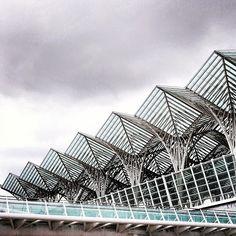 Umbrella architectural detail- Portugal train station