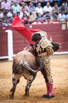 El Juli. La ajustada interpretación de la manoletina en Ciudad Real