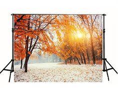 7x5ft(210x150cm) cm sans les rides automne Photo Toile FR... https://www.amazon.fr/dp/B01IN57NIK/ref=cm_sw_r_pi_dp_x_ZDIqybD201W8S
