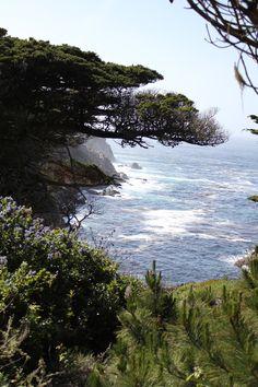 Pacific Ocean ~ Central Coast California