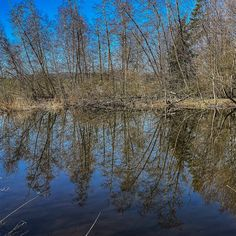 Die #kleinen #Fluchten sie sind #reizvoll und #attraktiv #dicht im #Erleben und #intensiv in der #Aktivität. Diesmal ging es zur #Kartause #Ittingen nahe #Frauenfeld zwei #Nächte drei #Tage so das #Format. Das #Wasser als #lebensspendendes #Element ist #allgegenwärtig bei der #Rundwanderung um die #Hüttener #Seen. Dass sie auch ein #reizvoller #Spiegel sein können das hat uns der #windstille #Sonnentag #geschenkt. Seen, Photography, Food, Mirrors, Water, Photograph, Fotografie, Essen, Photoshoot