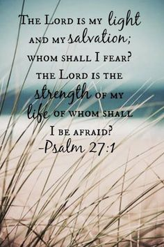 Psalm 27:1   - The Lord is my light and my salvation' whom shall I fear? The Lord is the strength of my life of whom shall I be afraid?