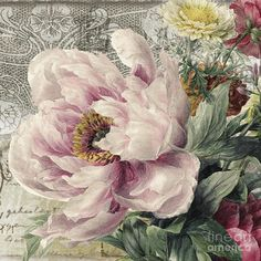 Paris Peony Canvas Print / Canvas Art by Mindy Sommers - Malerei Kunst Vintage Cards, Vintage Paper, Vintage Postcards, Peony Painting, China Painting, Decoupage Art, Decoupage Vintage, Art Floral, Canvas Art