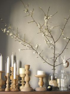 Blossoms of yellow plum and a lot of candles for Easter...