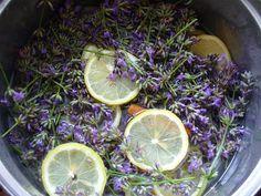 Tvoření od IVETULE: Levandulkový sirup. Korn, Cabbage, Lavender, Lime, Food And Drink, Vegetables, Fruit, Drinks, Blog