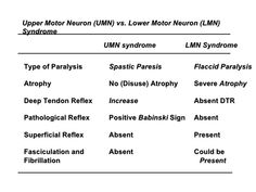 upper motor neuron lesion vs lower motor neuron lesion table - Google Search