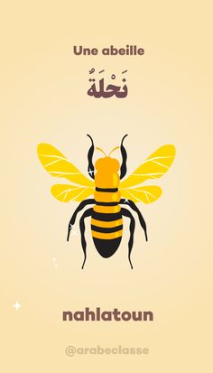 Learn Turkish Language, Arabic Language, Islam, Alphabet Arabe, Arabic Lessons, Arabic Alphabet, Learning Arabic, Arabic Quotes, Teaching