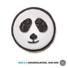 Panda, cute. Baby, cute. Baby Panda. Too cute! #dailytwist http://oreo.ly/DailyTwist