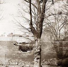 Petersburg, Virginia. Damage to
