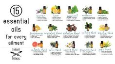 Getting started using doTERRA essential oils can be overwhelming. You know you want to revamp