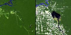 Flooding & Deforestation, Brazil.  Left: June 24, 1984. Right: August 6, 2011. The Samuel Dam is located along the Jamari River in Rondonia, Brazil. These images show the area in 1984, shortly after construction of the hydroelectric dam began, and in 2011. The reservoir created by the dam flooded the upstream forest and displaced many people. Also evident in the images is the deforestation that has affected much of the region.