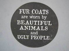 True that Support anti-animal cruelty funds