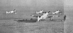 Ki-44's
