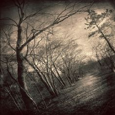 """""""Path Of Nightmares"""" reminds me of resident evil or silent hill :)"""