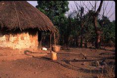 from Friends of Guinea website