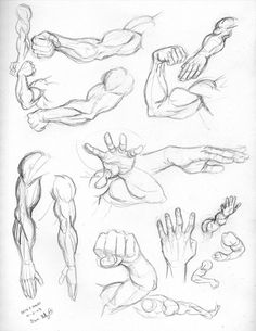 arm and hand /bras et main tuto