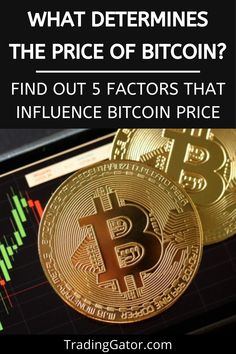 What Determines the Price of Bitcoin? Top Cryptocurrency, Cryptocurrency Trading, Bitcoin Cryptocurrency, Bitcoin Market, Buy Bitcoin, Bitcoin Price, Money Trading, Day Trading, Online Stock Trading