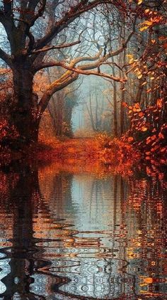 lago d'autunno