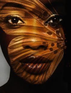 Black. Gold. Butterfly. Art.