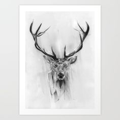 Self initiated piece.<br/> <br/> (deer, red deer, pencil, drawing, portrait)