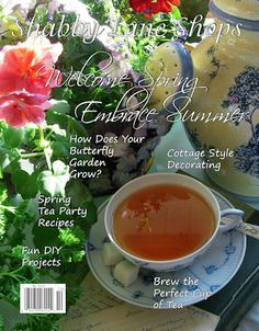 Our  Welcome Spring Embrace Summer 2012 issue - Coming soon!  Will be on the newsstands of Barnes & Noble, Bookworld, Hancock Fabrics & many other newsstands April 2nd - for sale in 2 weeks on Shabby Lane Shops!  Great articles, wonderful recipes & fun DIY projects!