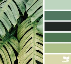 { color nature } - https://www.design-seeds.com/in-nature/nature-made/color-nature-15