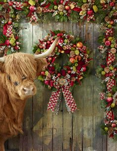 Our Estate Barn Wreath complete with Highland Cow.