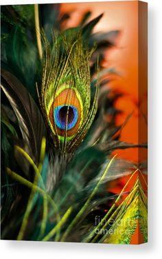 Eye Canvas Print by Lana Muriyan. All canvas prints are professionally printed, assembled, and shipped within 3 - 4 business days and delivered ready-to-hang on your wall. Choose from multiple print sizes, border colors, and canvas materials. Radha Krishna Images, Lord Krishna Images, Krishna Pictures, Krishna Art, Ganesh Images, Feather Wallpaper, Cute Galaxy Wallpaper, Music Wallpaper, Iphone Wallpaper