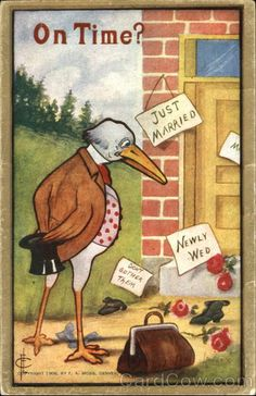 """Stork On Time illustration,by Frederick L. Cavally """"Not Yet, Mr. Postcard Album, Zany Zoo, Vintage Postcards, Vintage Clip, Tiger Love, New Baby Cards, Vintage Greeting Cards, Cute Pictures, New Baby Products"""