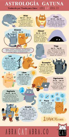 Astrología Gatuna