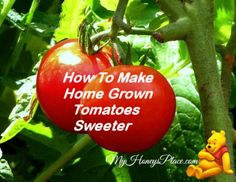 How To Make Home Grown Tomatoes Sweeter