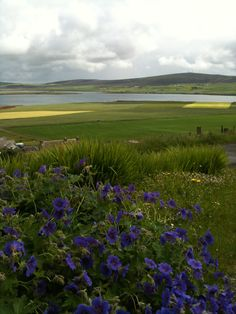 Orkney Islands, photo by  http://coachnotes.files.wordpress.com