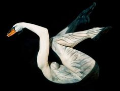 Today we would share with you the portion of the Body Painting Pictures. The Body Painting is the art of painting on the body, which is one of the body art's areas Illusion Kunst, Illusion Art, Camouflage Art, Flamingo Painting, Foto Art, Animal Paintings, Body Paintings, Realistic Paintings, Art Design