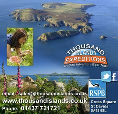 Thousand Islands Expeditions,  Boat Trips