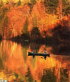 New England canoeing surrounded by fiery trees? Yes, please! Quiet moments are much needed.