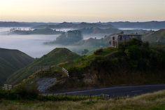 Es wird Tag - Tahora Sattel - Forgotten World Highway - Neuseeland Nordinsel