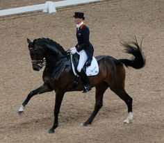 Say What? A Quick Guide to Decoding Your Horse's Body Language