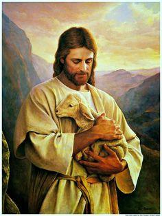 Jesucristo con la oveja perdida. Greg Olsen